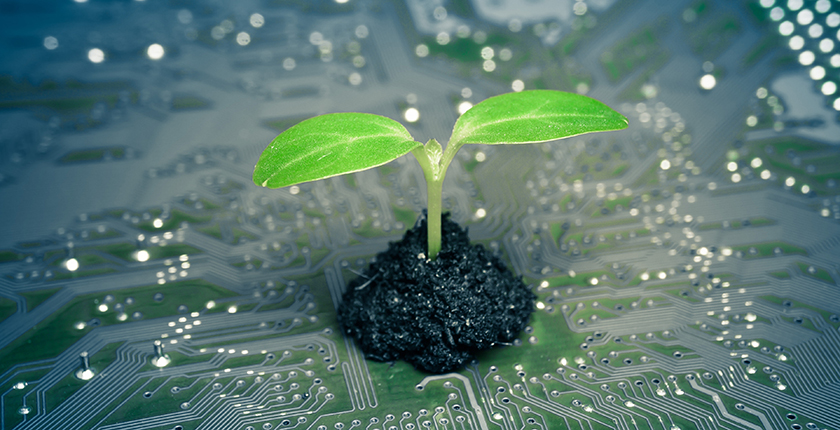 Digital Transformation and the Green Deal